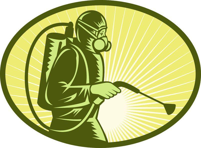 شركة مكافحة حشرات بجدة المدار كلين